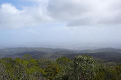 Blick vom Mt. Lofty