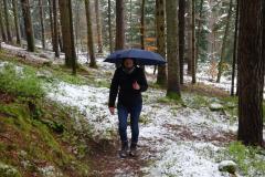 Wanderung im Schwarzwald