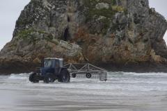 Roadtrip Nordküste Spanien - Algeneernte am Strand von la Franca