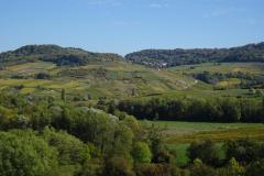 Auf-dem-Weg-ins-Elsass
