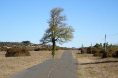 Cevennen - Auf dem Circuit du Causse de Sauveterre