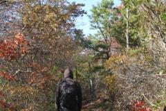 Wandern in den Appalachen