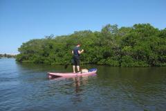 Paddleboarding-Sarasota