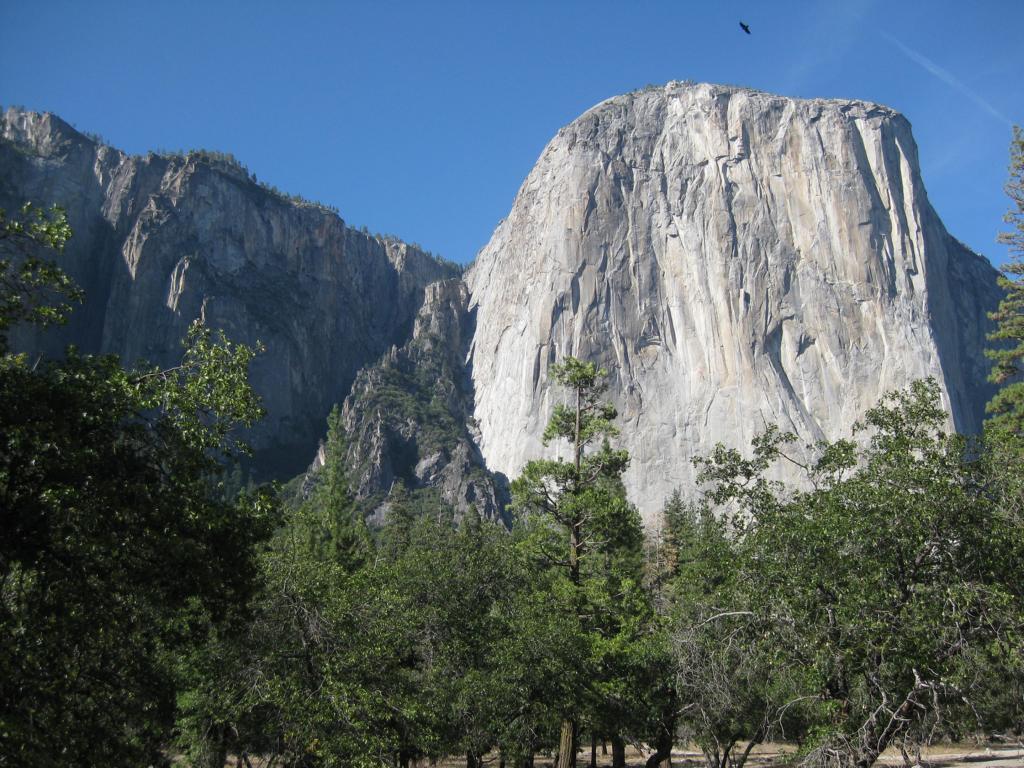 Yosemite Valley Blick auf den El Capitan
