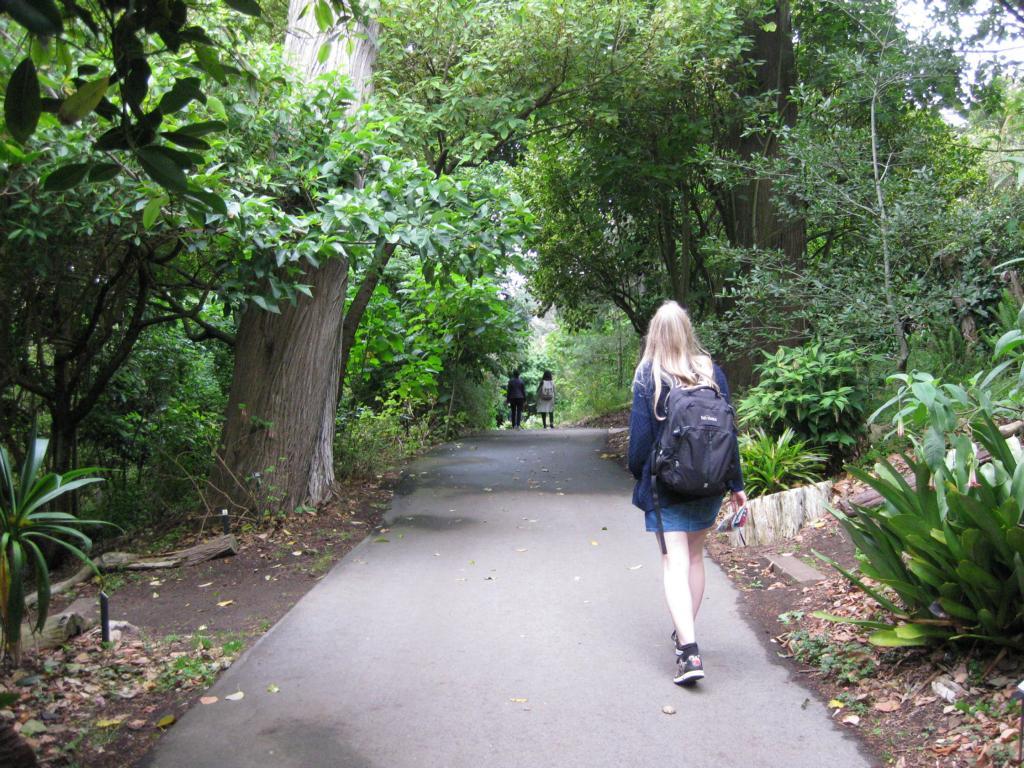 Botanischer Garten von San Francisco