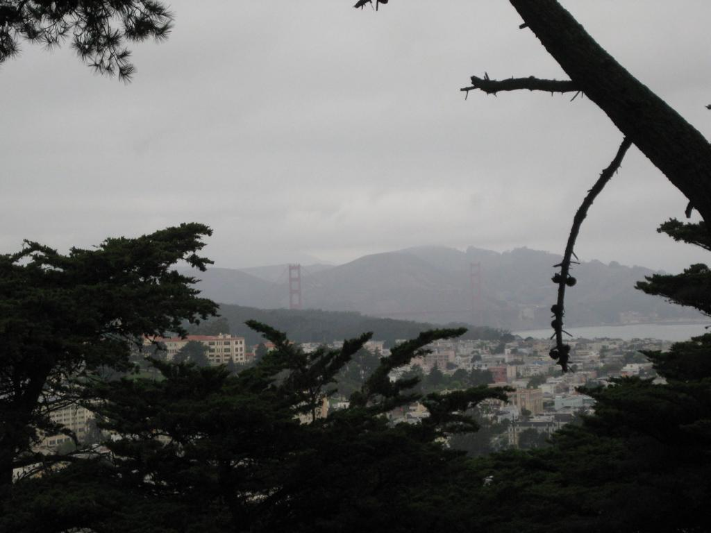 Buena Vista Park - Blick auf die Golden Gate Bridge