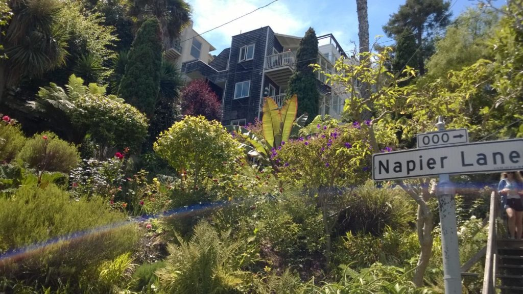San Francisco - Greenwich Steps