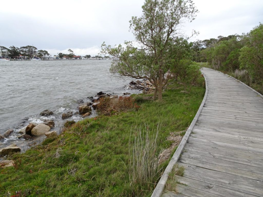 Raymond Island - Boardwalk