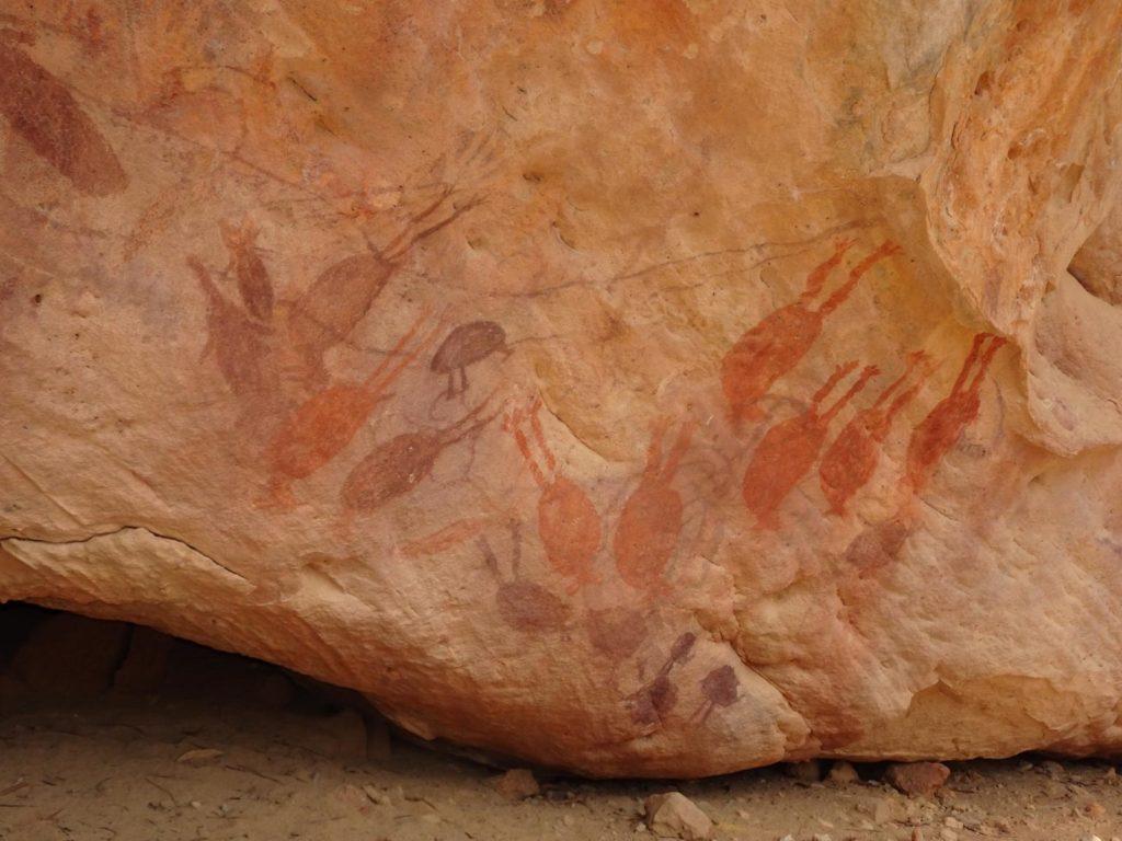 Aboriginal Rock Art - Flying Fox Rock
