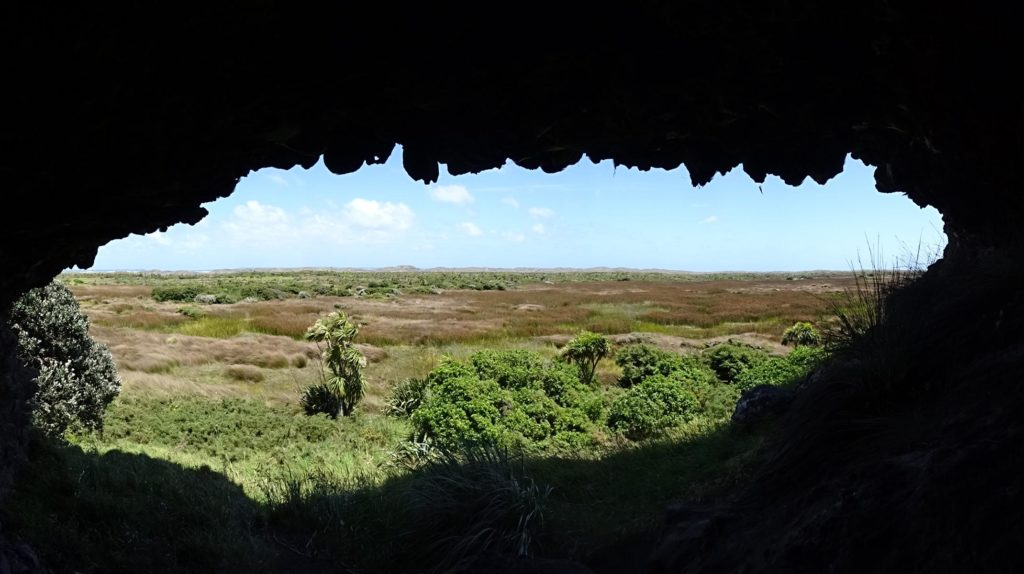 Blick aus einer Höhle