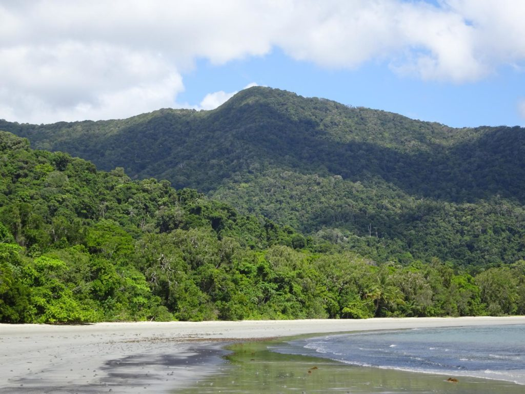 Daintree Nationalpark - Cape Tribulation Beach
