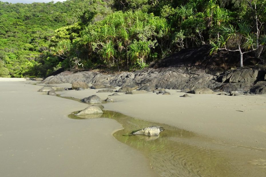 Daintree Nationalpark - Noah Beach