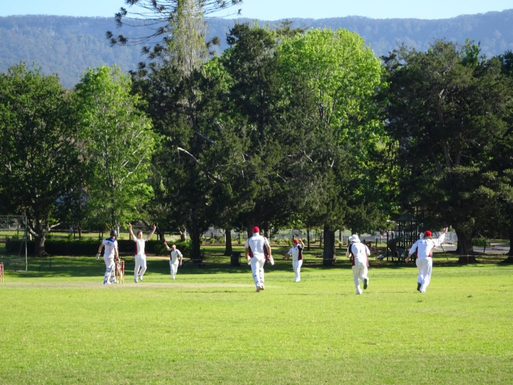 Grand Pacific Drive - Cricket in Jamberoo