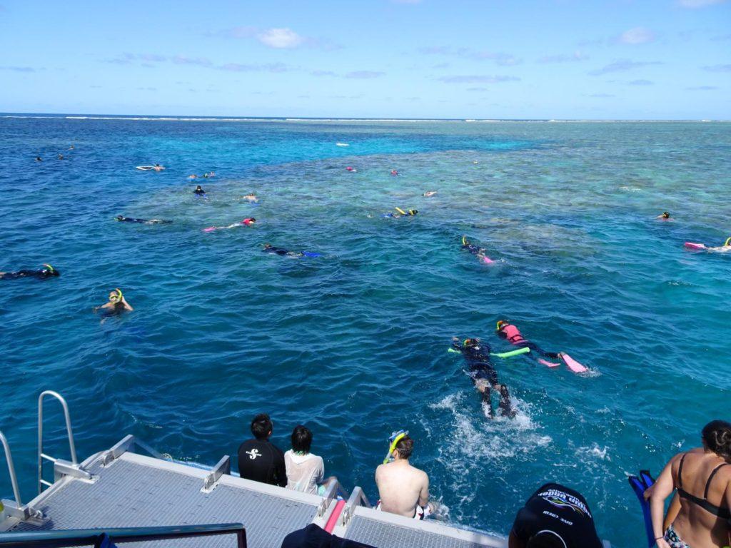 Great Barrier Reef - Schnorcheln am Norman Reef