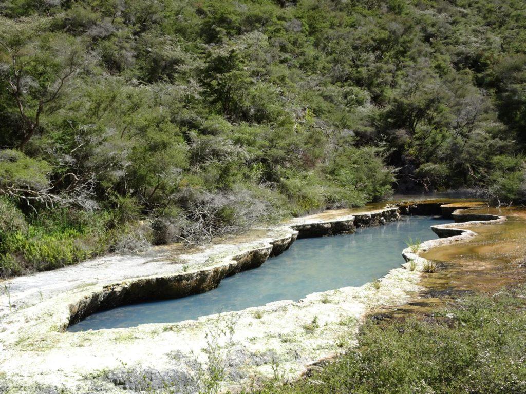 Waimangu Volcanic Valley - Warbrick Terrace
