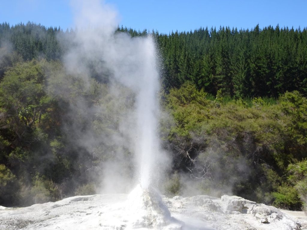 Waiotapu Thermal Wonderland - Lady Knox Geysir