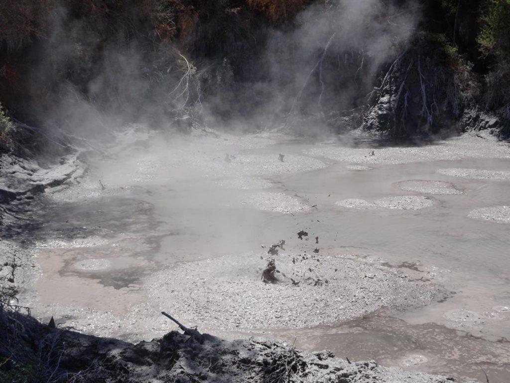 Waiotapu Thermal Wonderland - Mud Pool