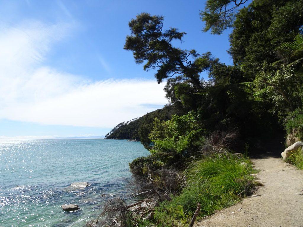 Abel Tasman Coastal Track - Blick aufs Meer