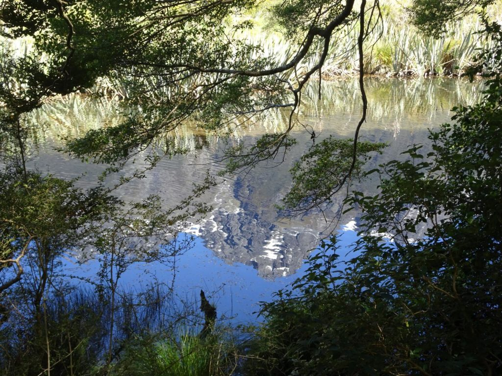 Mirror Lake am Milford Sound Highway