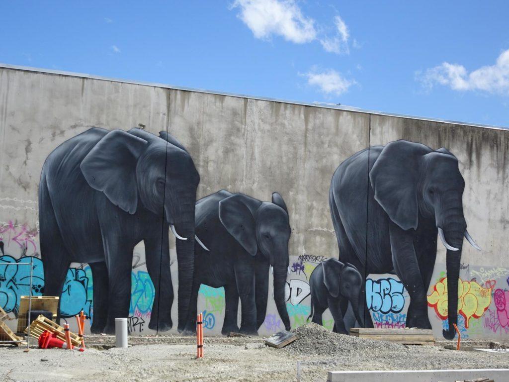 Christchurch Grafftiti Elefanten Manchester Street